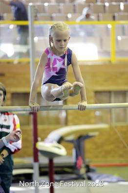Nellies Gymnastics
